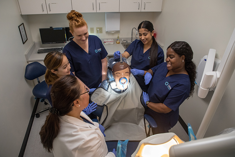 Dental assistant students gathered around a simulation mannequin